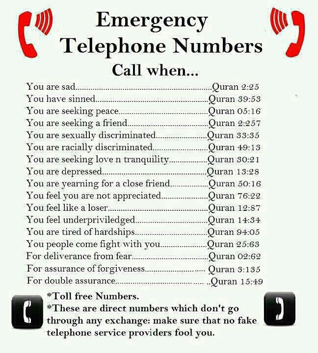 Nomor Tel Darurat Syar i